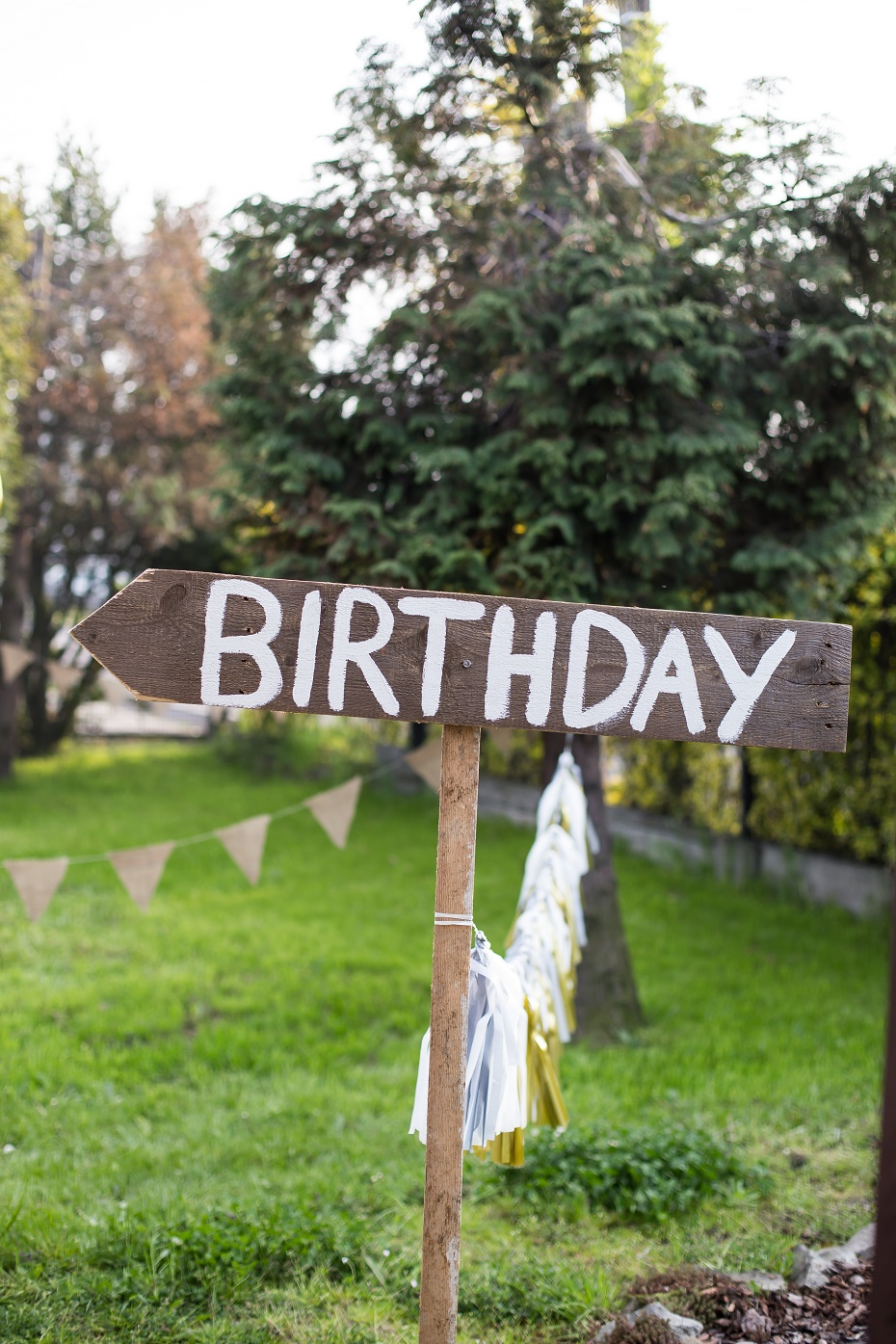 Urodziny w plenerze