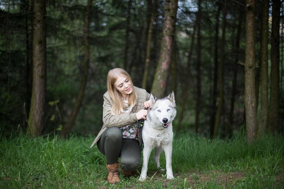 żywienie psa po sterylizacji