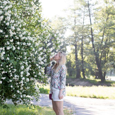 Promod | Wiosna/Lato