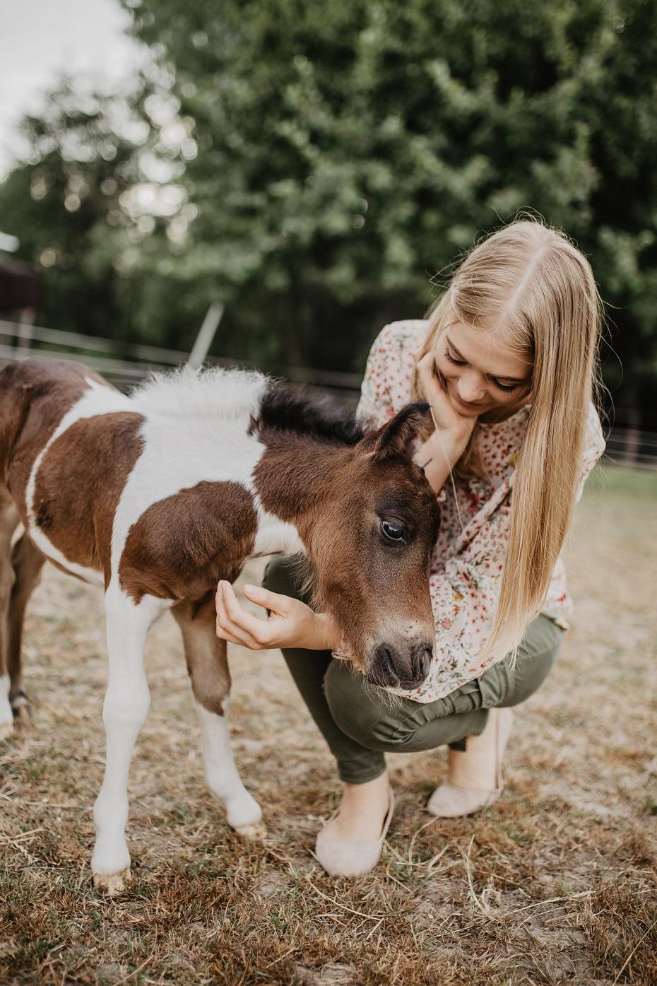 źrebak od konia